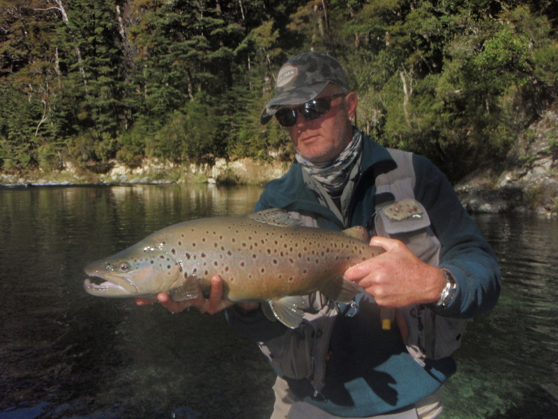 Trout fishing in New Zealand