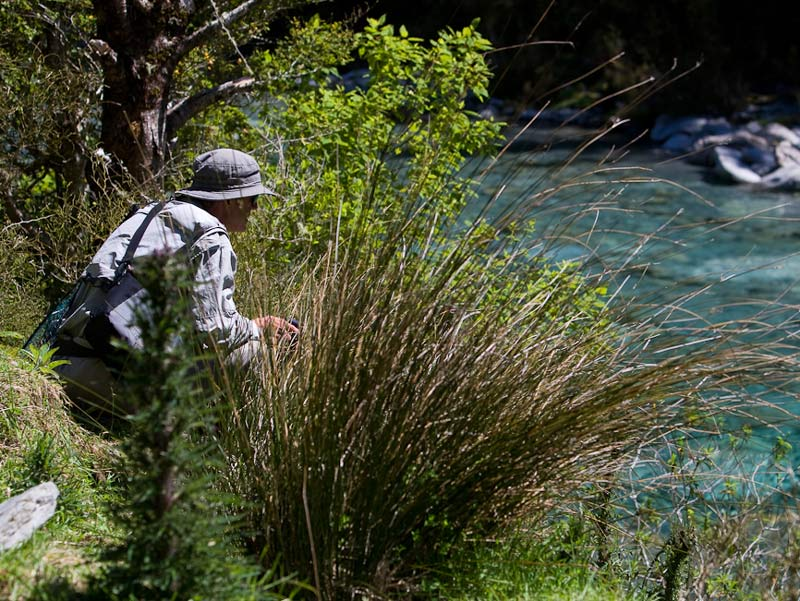 Stalking the illusive trout